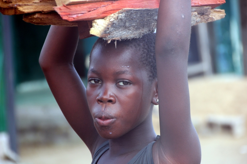 Beautiful Ndobo girl carrying firewood.