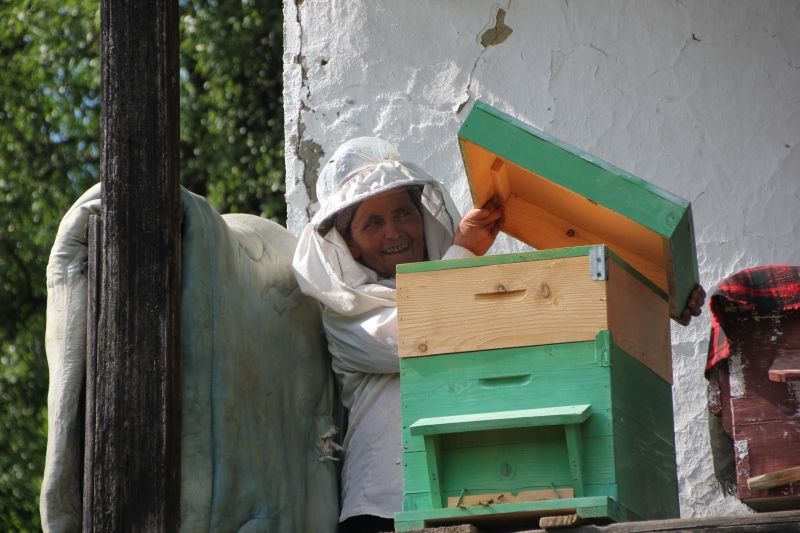 Claudia & hive