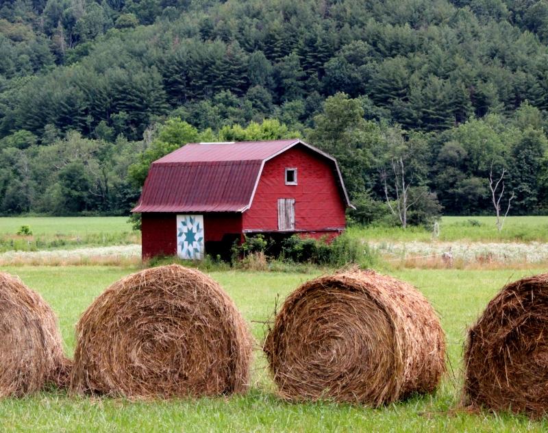 farm & haybales