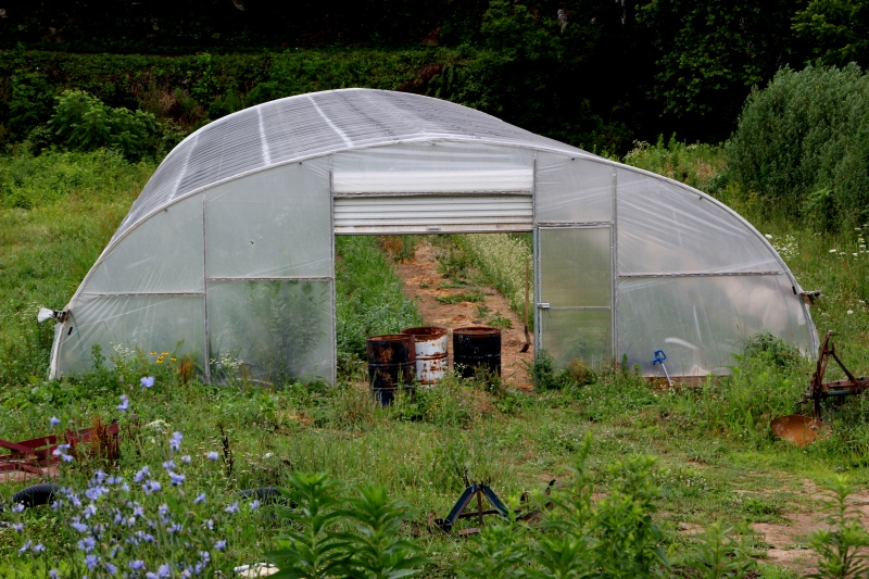 Charles's greenhouse where he raises seedlings to share with other farmers.