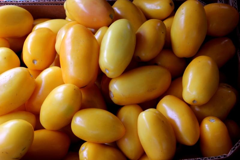yellow romas