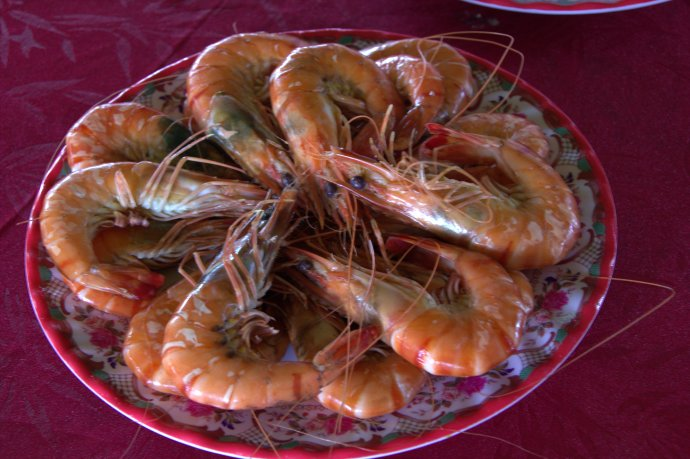 Jumbo Shrimp … and no, that's not an oxymoron.   Heifer 12 ...