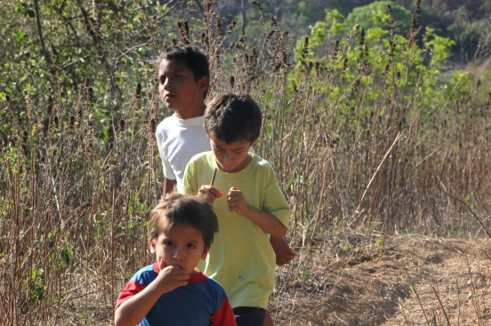 The Santos boys walking through the dry forest.