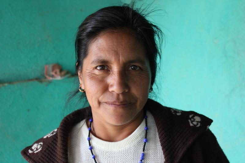 Guatemala (January)