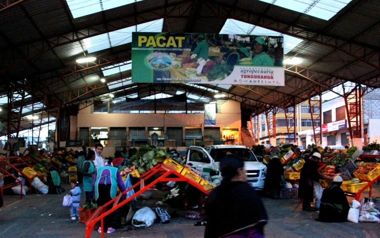 pacat market