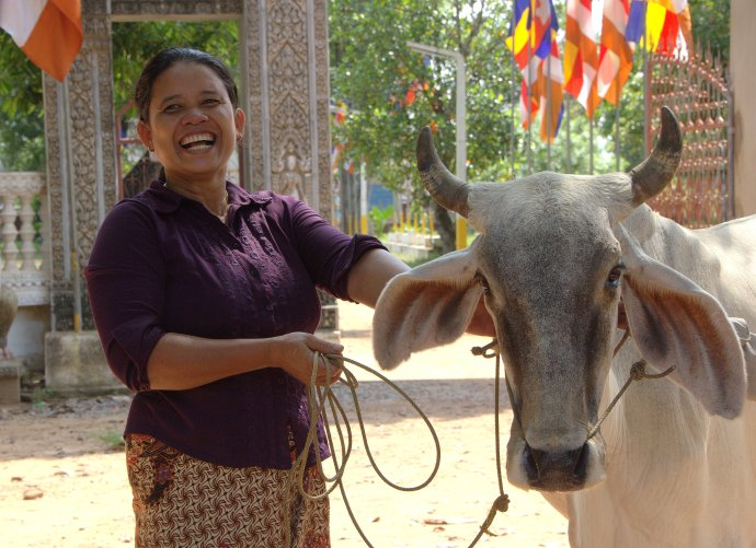woman & cow