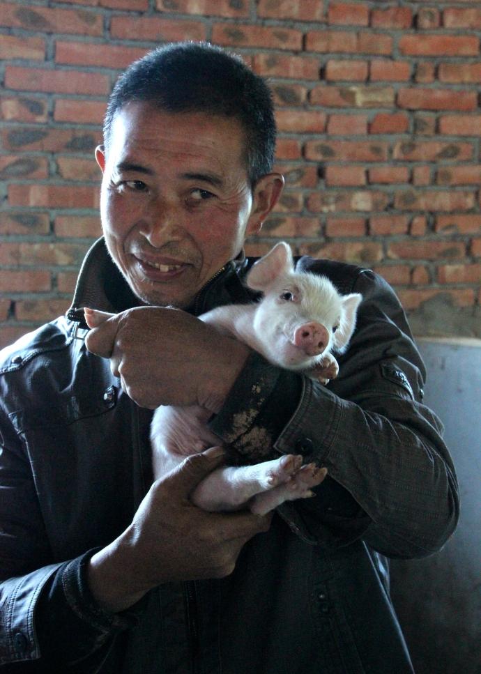 man w pig2