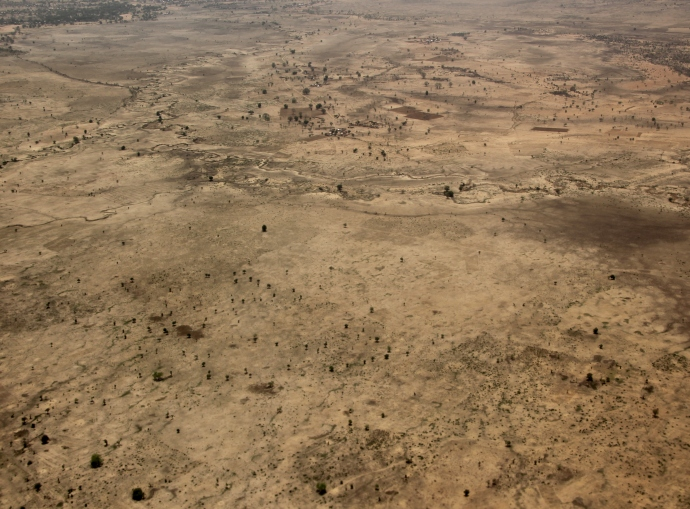 Scorched earth, Maroua
