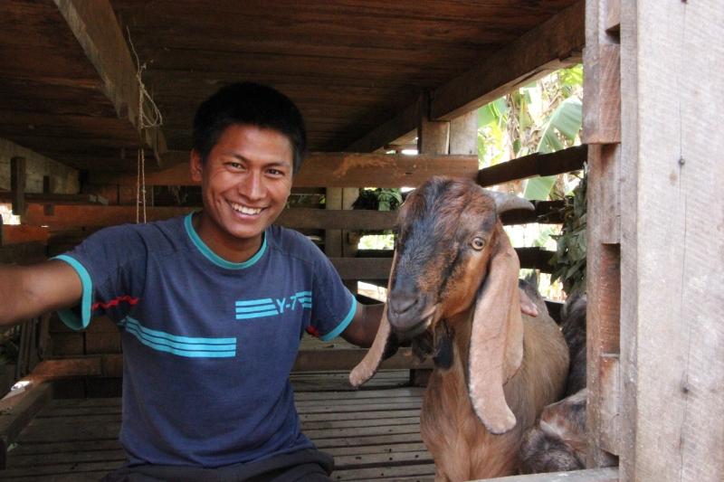 Som & goat